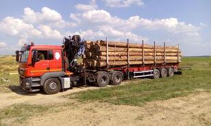 MAN TGS 26.480 6x4 BB kamion za prijevoz drva