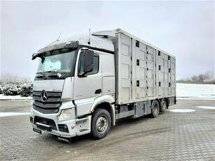 MERCEDES-BENZ Actros 2543 6x2 kamion za prijevoz stoke