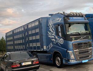 VOLVO TOP FH13 540-EURO 6 -4 level Jumbo PLAVAC   kamion za prijevoz stoke