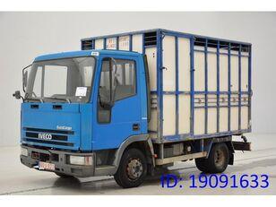 IVECO 65E14 kamion za prijevoz stoke