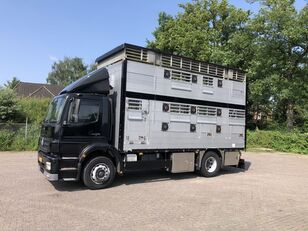 MERCEDES-BENZ Axor Pezzaioli 1/2 stock Veewagen Hefdak kamion za prijevoz stoke